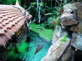 Krokodilsee im Tropen-Aquarium © Hagenbeck